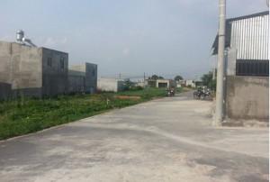 Bán Đất Trảng Dài – Biên Hòa – Đồng Nai – Dân Cư Động – Giá Rẻ tư 160 triệu/lô/100m2