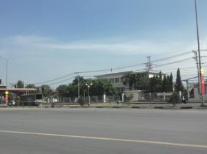 Bán đất Phước Tân Biên Hòa giá 350 Triệu 100 m2