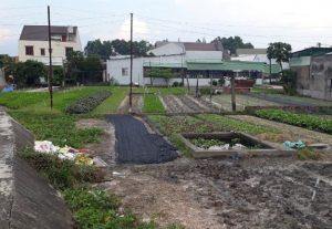 Bán đất Biên Hòa 260 triệu/lô sau bệnh viện Trung Ương 2